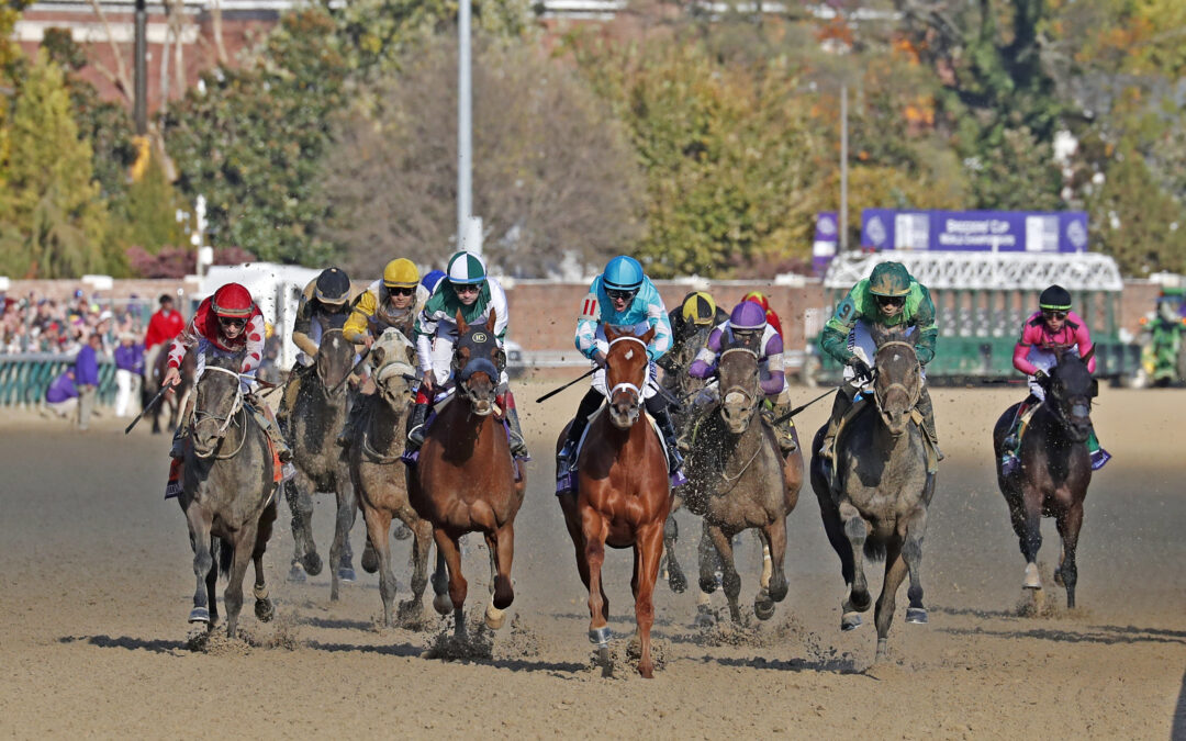 Excitement rising as Breeders' Cup looms large
